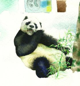 2010_Gran-Panda-Primigenio